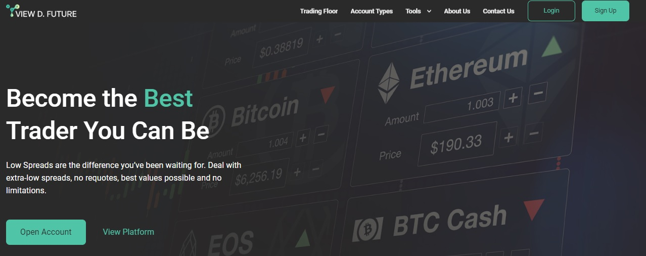 ViewDFuture website